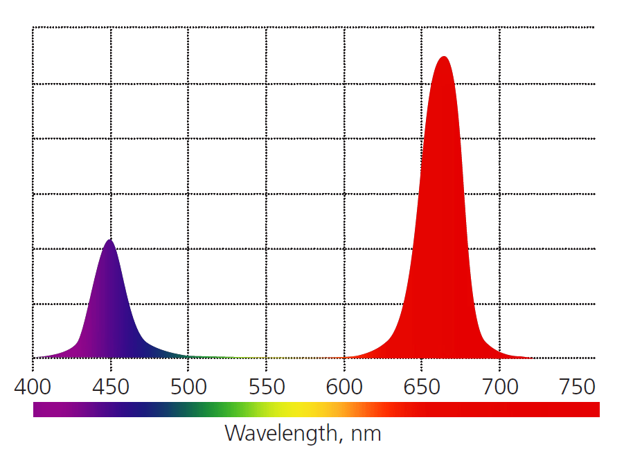Спектр лампы из синих и красных светодиодов, подходящих для растений