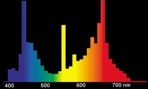 Спектр лампы для растений