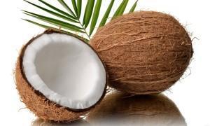 Плод кокоса