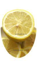 Павловский лимон нарезка