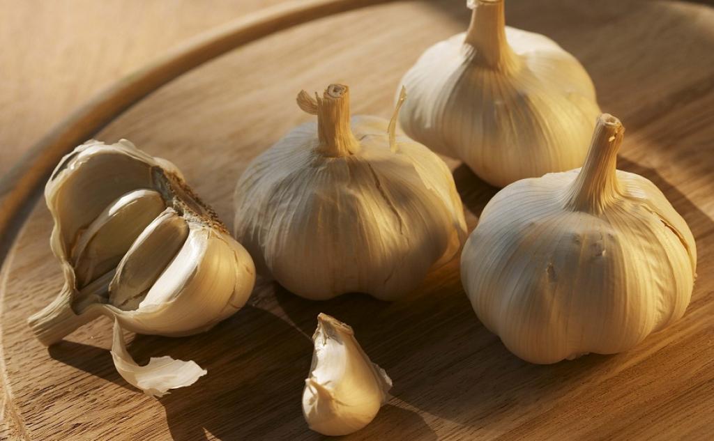 Сильный запах чеснока отпугнет белокрылку
