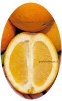плод апельсина Вашингтон Навел