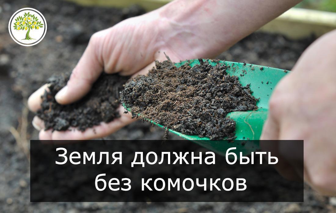 Грунт для цитрусовых без комочков