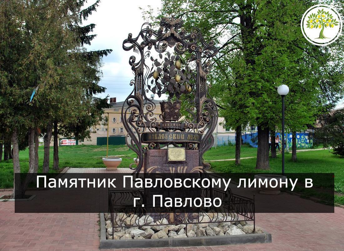 Памятник Павловскому лимону фото