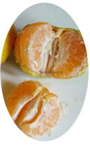 Плод иволистного мандарина фото