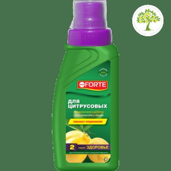картинка бутылки Bona Forte