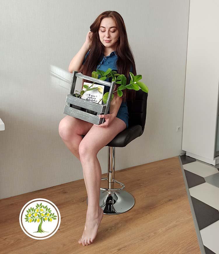 Цитрусовые растения в подарок девушке
