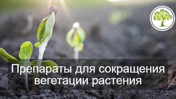 сократить вегетацию растения