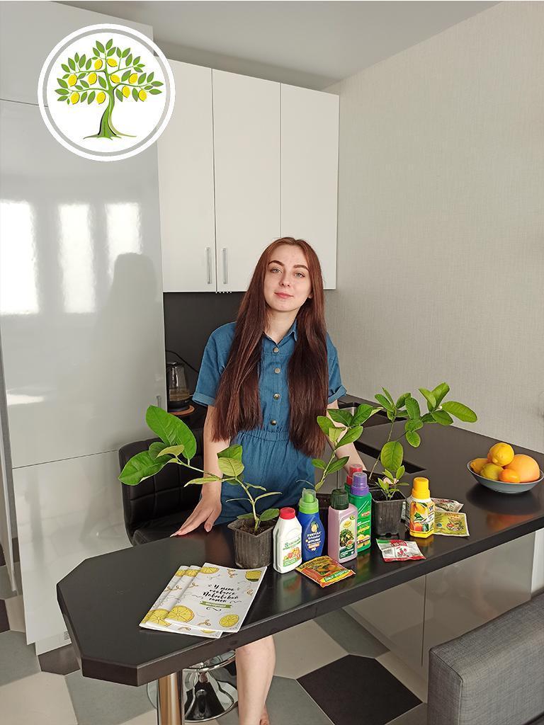 домашние цитрусовые