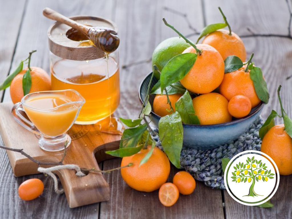 Сок из домашнего мандарина фото